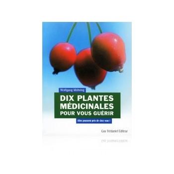 Dix plantes médicinales pour vous guérir